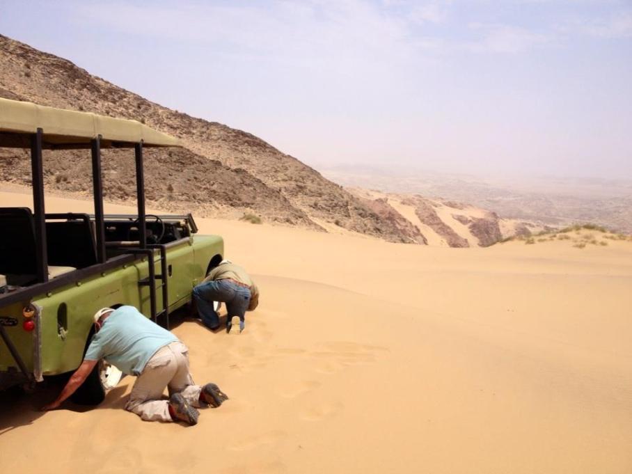 Flying Safari, Skeleton Coast, Namibia, Schoeman Brothers